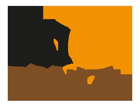logo-sole-bronze
